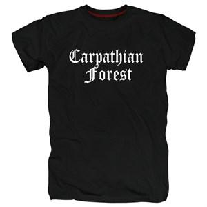 Carpathian forest #11