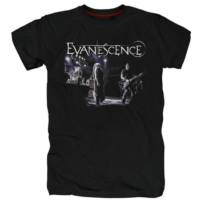 Evanescence #7 - фото 70015